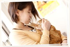 病気を予防する、避妊去勢手術