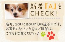 新着「A」をCHECK!